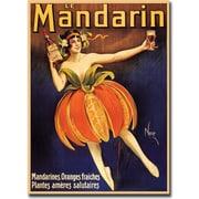 "Trademark Global ""Mandarin"" Canvas Art, 24"" x 32"""
