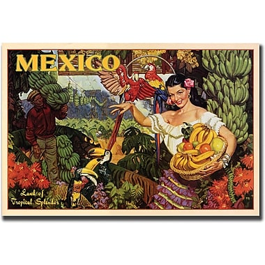 Trademark Global in.Mexicoin. Canvas Art, 24in. x 32in.