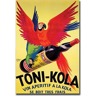 Trademark Global in.Toni Kolain. Canvas Art, 35in. x 47in.