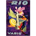 Trademark Global in.Rio Varigin. Canvas Art, 18in. x 24in.