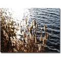 Trademark Global Ariane Moshayedi in.Landscapein. Canvas Art, 30in. x 47in.