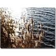 "Trademark Global Ariane Moshayedi ""Landscape"" Canvas Art, 30"" x 47"""
