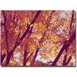 "Trademark Global Ariane Moshayedi ""Trees"" Canvas Art, 22"" x 32"""
