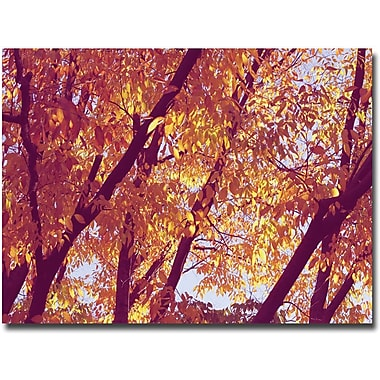 Trademark Global Ariane Moshayedi in.Treesin. Canvas Art, 30in. x 47in.