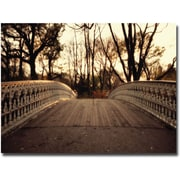 "Trademark Global Ariane Moshayedi ""Bridge"" Canvas Art, 22"" x 32"""