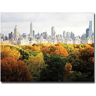 Trademark Global Ariane Moshayedi in.Fall Cityscapein. Canvas Art, 30in. x 47in.