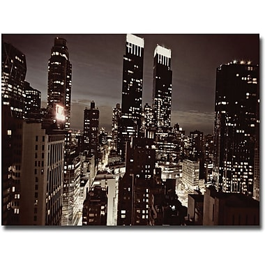 Trademark Global Ariane Moshayedi in.NYC After Darkin. Canvas Art, 16in. x 24in.