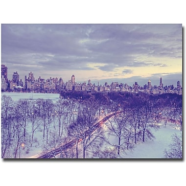 Trademark Global Ariane Moshayedi in.Snowy Wonderlandin. Canvas Arts