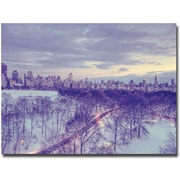"Trademark Global Ariane Moshayedi ""Snowy Wonderland"" Canvas Art, 16"" x 24"""
