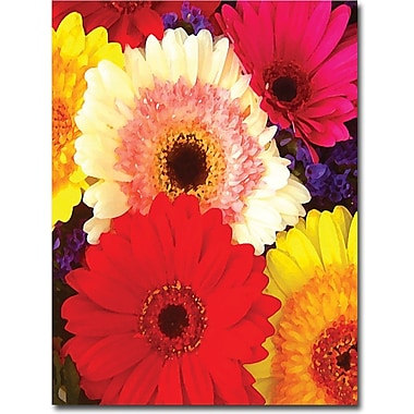 Trademark Global Amy Vangsgard in.Brightly Colored Gerbersin., Canvas Art, 18in. x 24in.