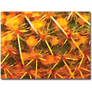 Trademark Global Amy Vangsgard in.Cactus Patternsin. Canvas Art, 24in. x 32in.
