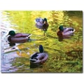 Trademark Global Amy Vangsgard in.Four Ducks on Pondin. Canvas Art, 18in. x 24in.