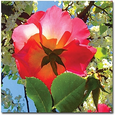 Trademark Global Amy Vangsgard in.Rose Under Treein. Canvas Art, 35in. x 35in.