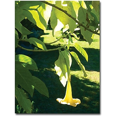 Trademark Global Amy Vangsgard in.Singe Angel's Trumpetin. Canvas Art, 35in. x 47in.