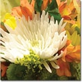 Trademark Global Amy Vangsgard in.Spring Flower Burstin. Canvas Art, 35in. x 35in.