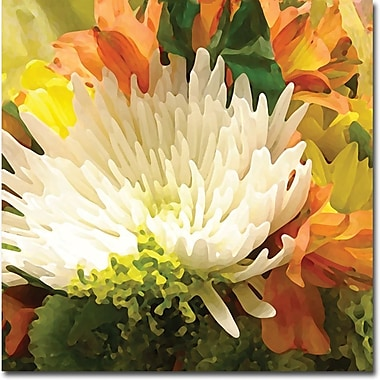 Trademark Global Amy Vangsgard in.Spring Flower Burstin. Canvas Art, 18in. x 18in.
