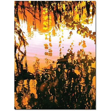 Trademark Global Amy Vangsgard in.Ducks in Morning Lightin. Canvas Art, 14in. x 19in.