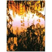 Trademark Global Amy Vangsgard Ducks in Morning Light Canvas Art, 14 x 19