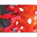 Trademark Global Amy Vangsgard in.Red Sunin. Canvas Art, 35in. x 47in.