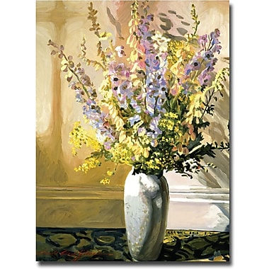 Trademark Global David Lloyd Glover in.Bouquet Imrpessionsin. Canvas Arts