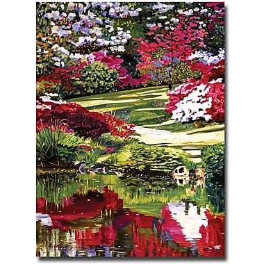 Trademark Global David Lloyd Glover in.Rhododendron Reflectionsin. Canvas Art, 35in. x 47in.