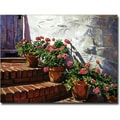 Trademark Global David Lloyd Glover in.Geranium Stepsin. Canvas Art, 16in. x 24in.