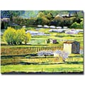 Trademark Global David Lloyd Glover in.Bordeaux Vineyards in Springin. Canvas Art, 35in. x 47in.