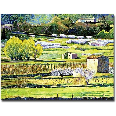 Trademark Global David Lloyd Glover in.Bordeaux Vineyards in Springin. Canvas Art, 26in. x 32in.