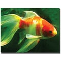 Trademark Global Amy Vangsgard in.Goldfishin. Canvas Art, 35in. x 47in.