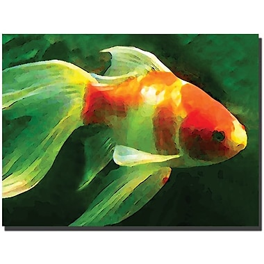 Trademark Global Amy Vangsgard in.Goldfishin. Canvas Arts