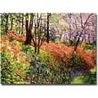 "Trademark Global David Lloyd Glover ""Magic Flower Forest"" Canvas Art, 35"" x 47"""