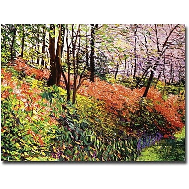 Trademark Global David Lloyd Glover in.Magic Flower Forestin. Canvas Art, 35in. x 47in.
