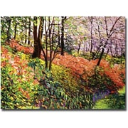 "Trademark Global David Lloyd Glover ""Magic Flower Forest"" Canvas Art, 35"" x 47"""