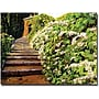 "Trademark Global David Lloyd Glover ""Garden Stairway"