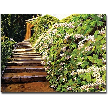 Trademark Global David Lloyd Glover in.Garden Stairway Tuscanyin. Canvas Art, 35in. x 47in.