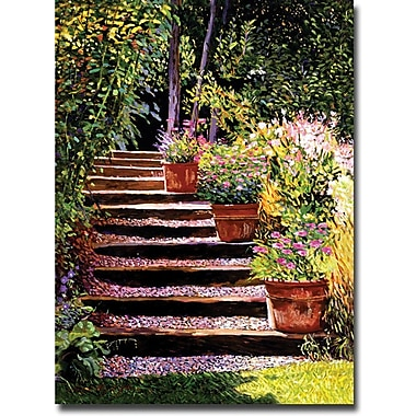 Trademark Global David Lloyd Glover in.Pink Faisies Wooden Stepsin. Canvas Art, 35in. x 47in.