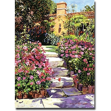 Trademark Global David Lloyd Glover in.The Five Stepsin. Canvas Art, 18in. x 24in.