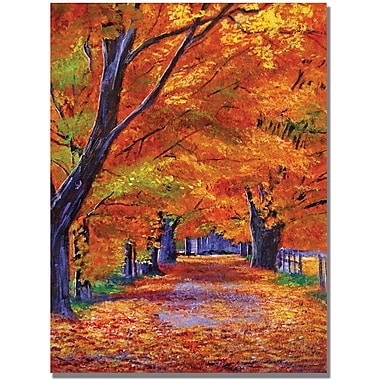 Trademark Global David Lloyd Glover in.Leafy Lanein. Canvas Arts