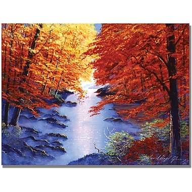 Trademark Global David Lloyd Glover in.Misty Blue Morningin. Canvas Arts