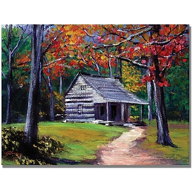 Trademark Global David Lloyd Glover in.Old Cabinin. Canvas Art, 18in. x 24in.