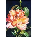 Trademark Global David Lloyd Glover in.Royal Rosein. Canvas Art, 30in. x 47in.