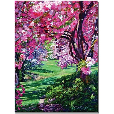 Trademark Global David Lloyd Glover in.Sakura Romancein. Canvas Art, 35in. x 47in.