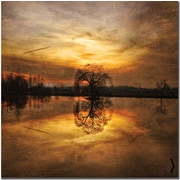 "Trademark Global Philippe Sainte Laudy ""Ball Gold"" Canvas Art, 35"" x 35"""