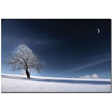Trademark Global Philippe Sainte Laudy in.Blue as Snowin. Canvas Art, 22in. x 32in.