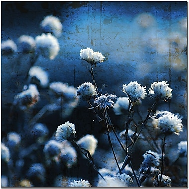 Trademark Global Philippe Sainte Laudy in.Blue Bokeyin. Canvas Art, 24in. x 24in.