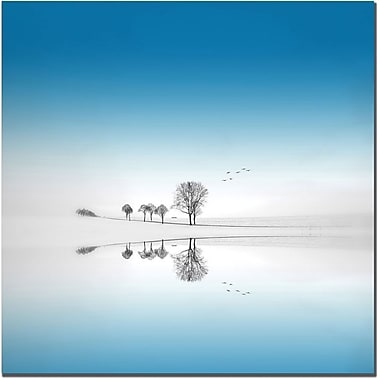 Trademark Global Philippe Sainte Laudy in.Blue Seasonin. Canvas Art, 18in. x 18in.
