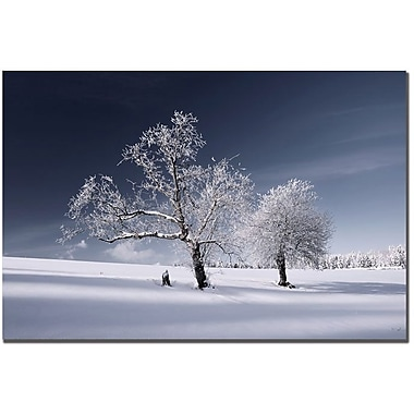 Trademark Global Philippe Sainte Laudy in.Duo Whitein. Canvas Art, 22in. x 32in.