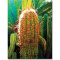 Trademark Global Amy Vangsgard in.Tall Cactusin. Canvas Art, 35in. x 47in.