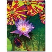 "Trademark Global Amy Vangsgard ""Waterlily"" Canvas Art, 35"" x 47"""