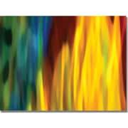 """Trademark Global Amy Vangsgard """"Fire and Water"""" Canvas Art, 18"""" x 24"""""""